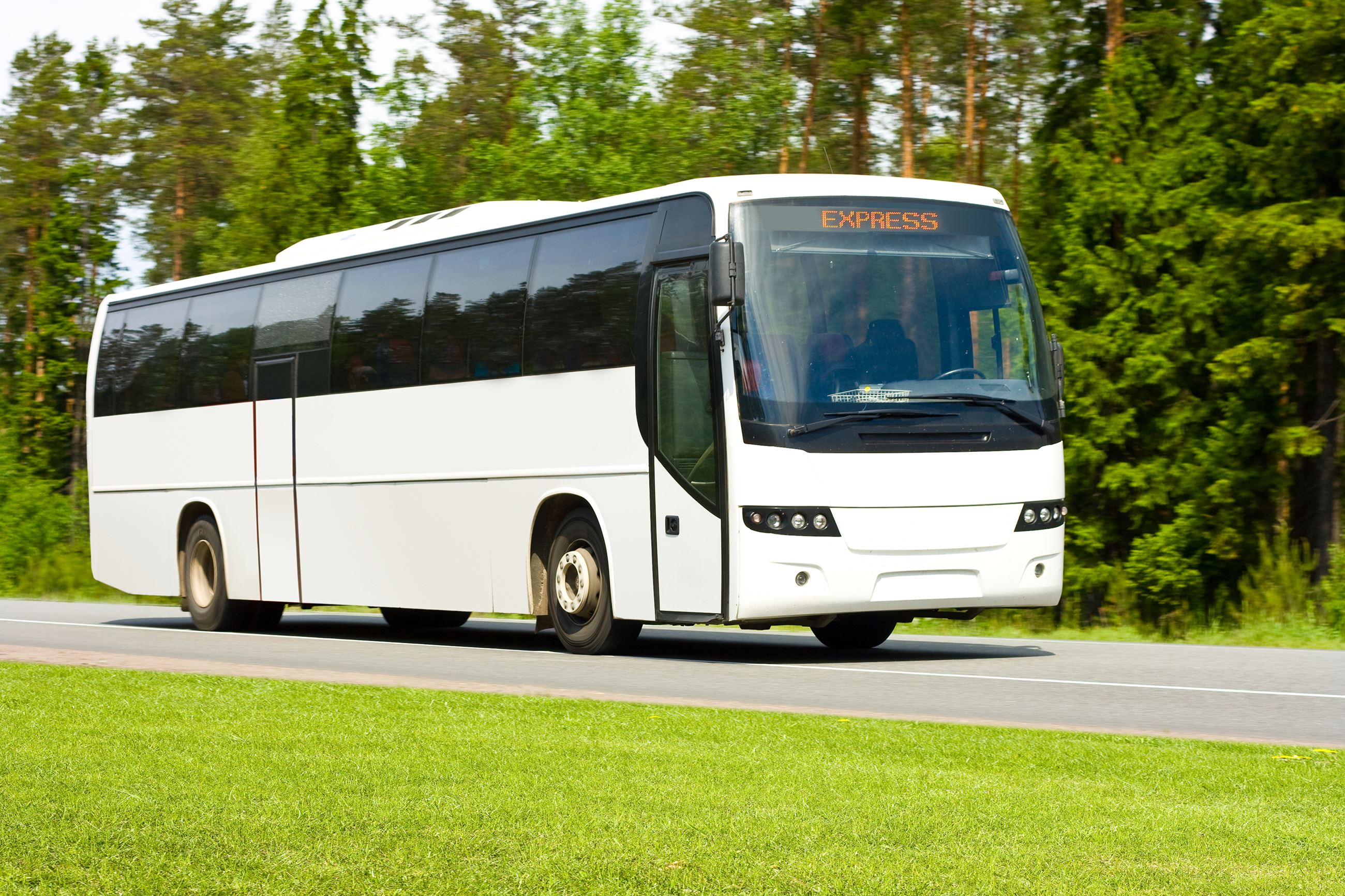 Charter Bus for trips